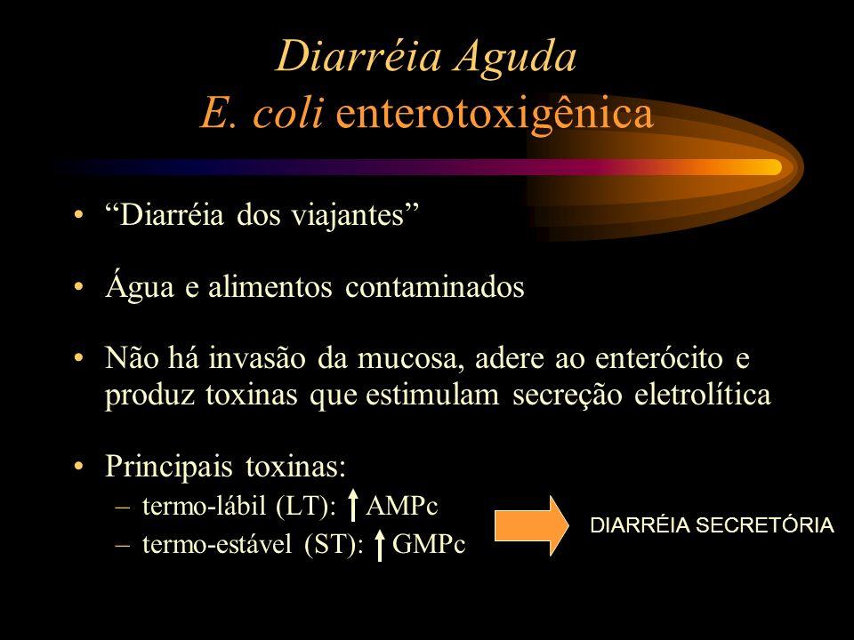 Diarréia Aguda E. coli enterotoxigênica