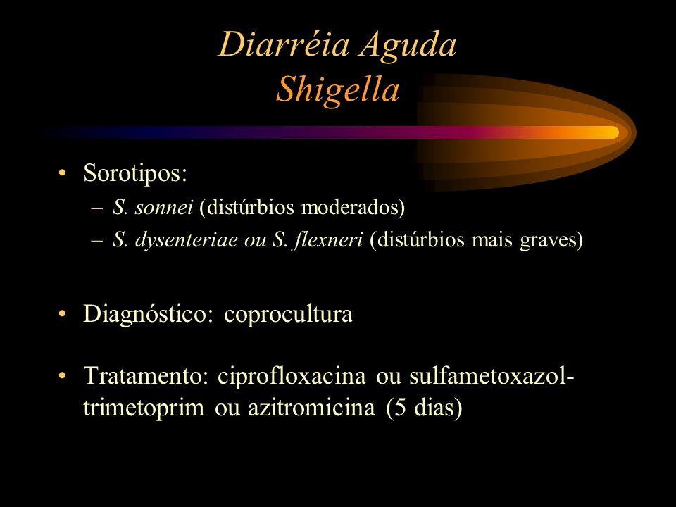 Diarréia Aguda Shigella