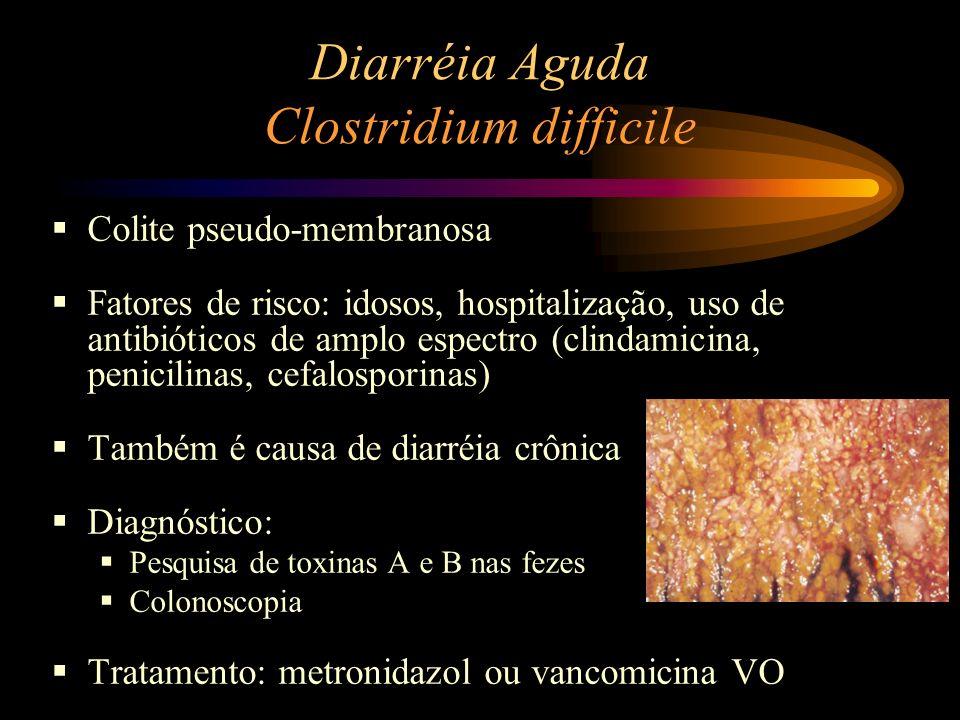 Diarréia Aguda Clostridium difficile