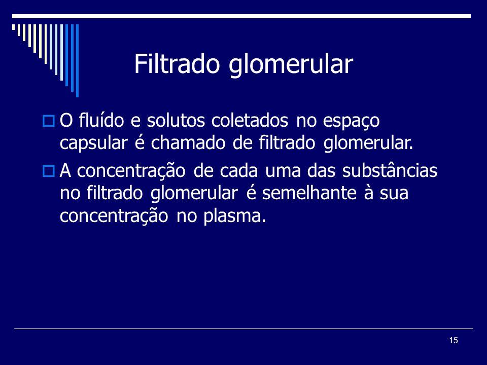 Filtrado glomerularO fluído e solutos coletados no espaço capsular é chamado de filtrado glomerular.