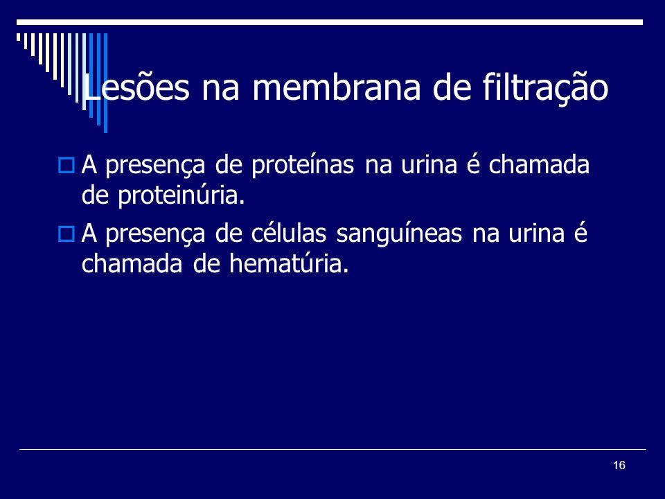 Lesões na membrana de filtração