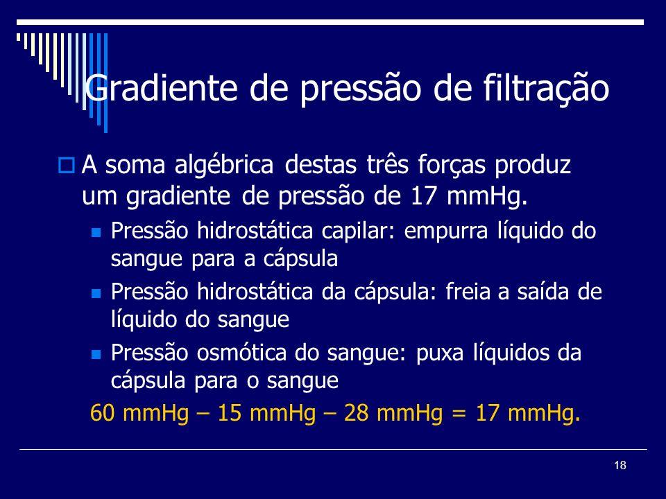 Gradiente de pressão de filtração