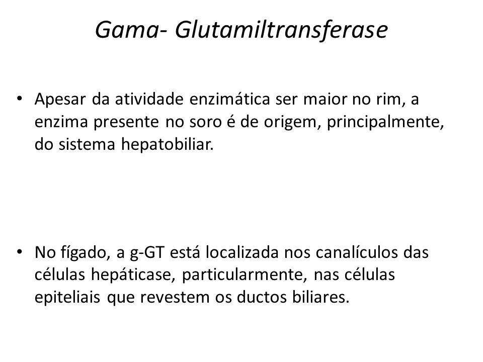 Gama- Glutamiltransferase
