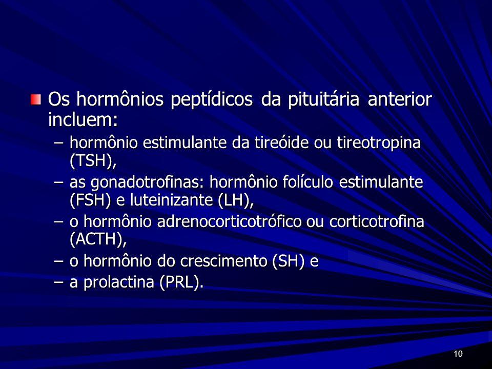 Os hormônios peptídicos da pituitária anterior incluem: