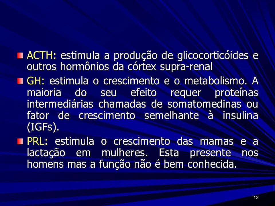 ACTH: estimula a produção de glicocorticóides e outros hormônios da córtex supra-renal