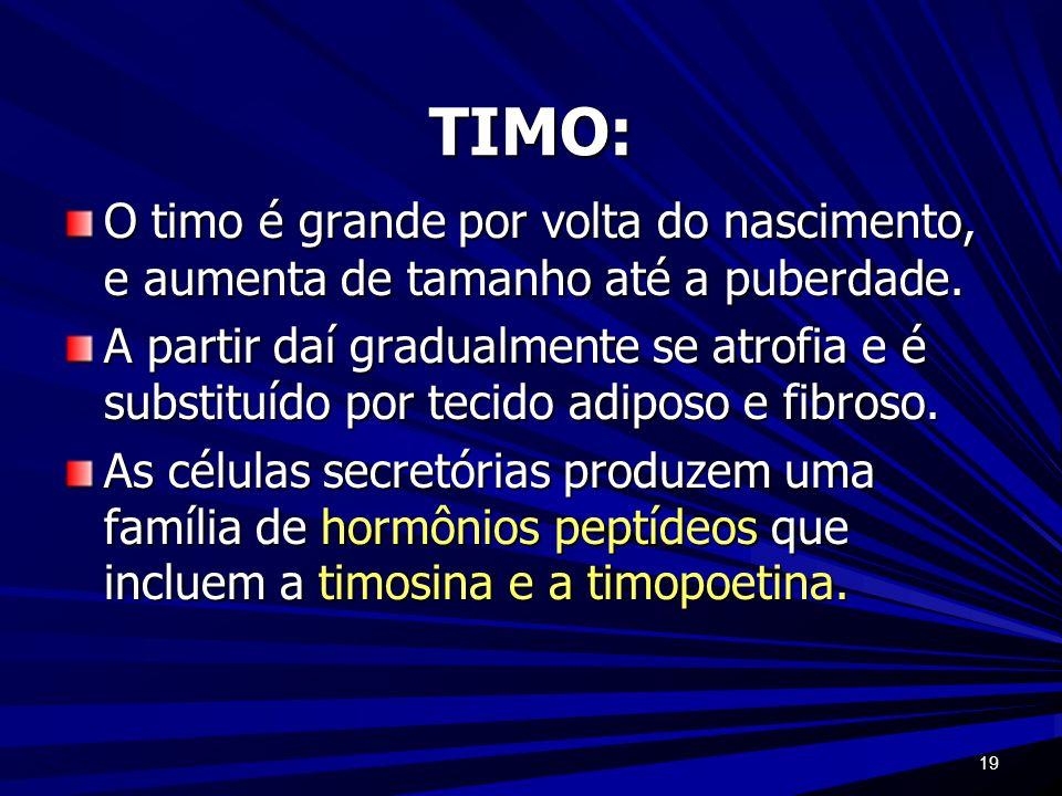 TIMO:O timo é grande por volta do nascimento, e aumenta de tamanho até a puberdade.