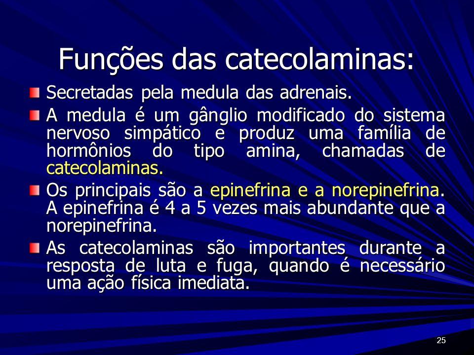 Funções das catecolaminas:
