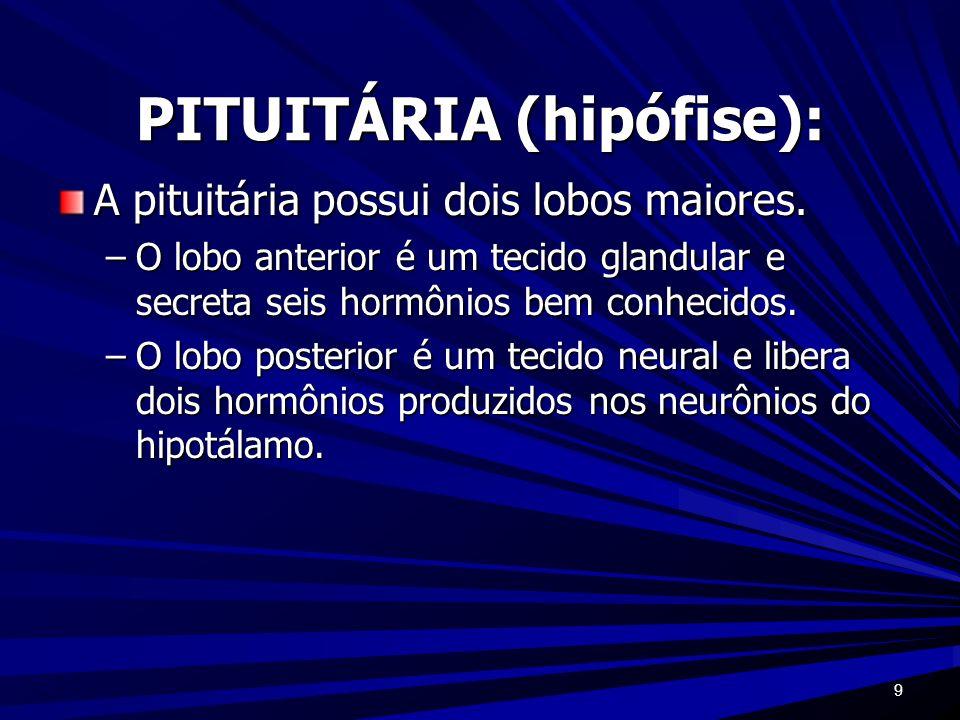 PITUITÁRIA (hipófise):