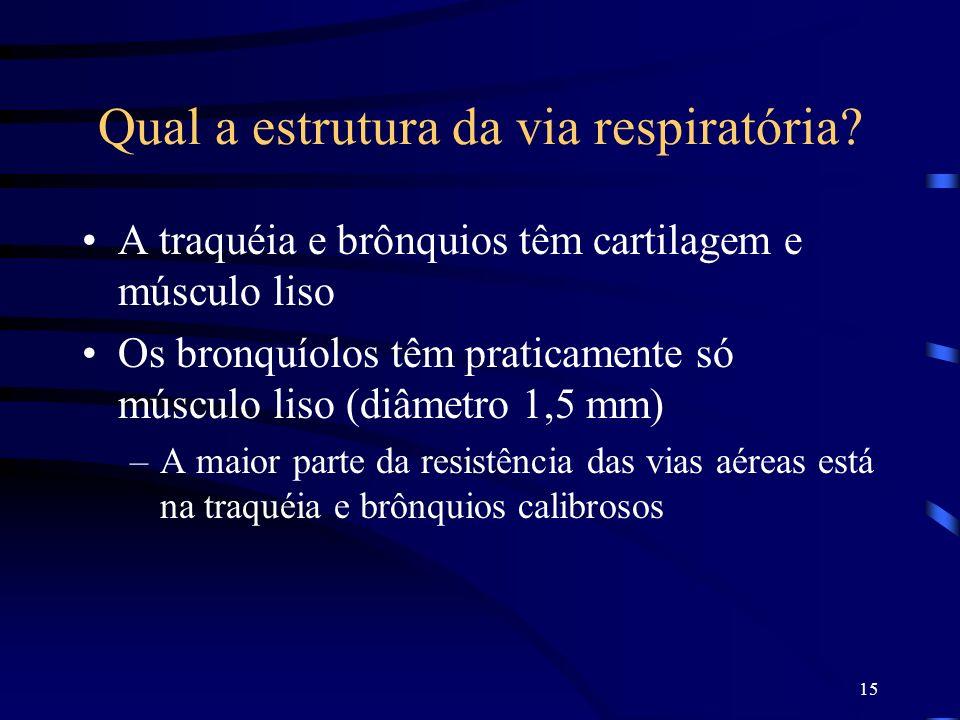 Qual a estrutura da via respiratória