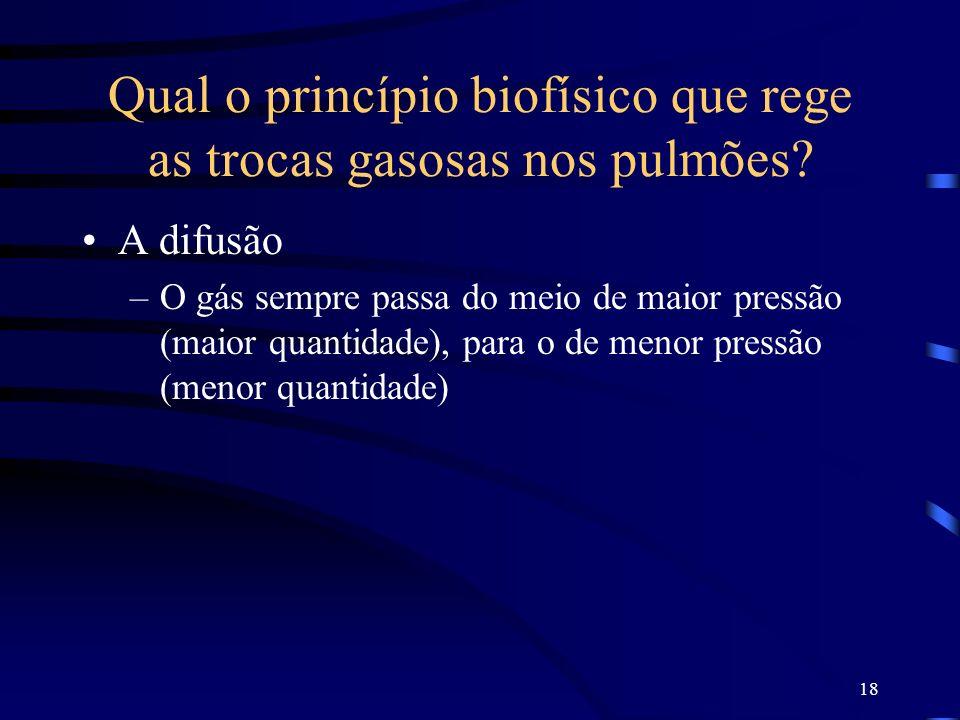 Qual o princípio biofísico que rege as trocas gasosas nos pulmões