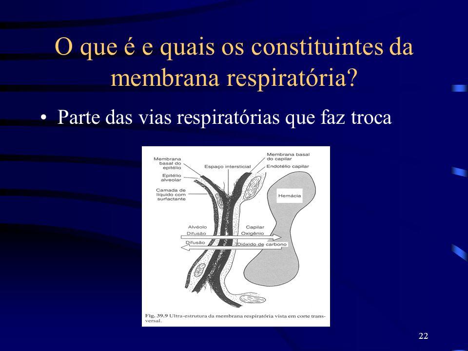 O que é e quais os constituintes da membrana respiratória