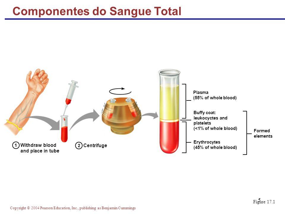 Componentes do Sangue Total