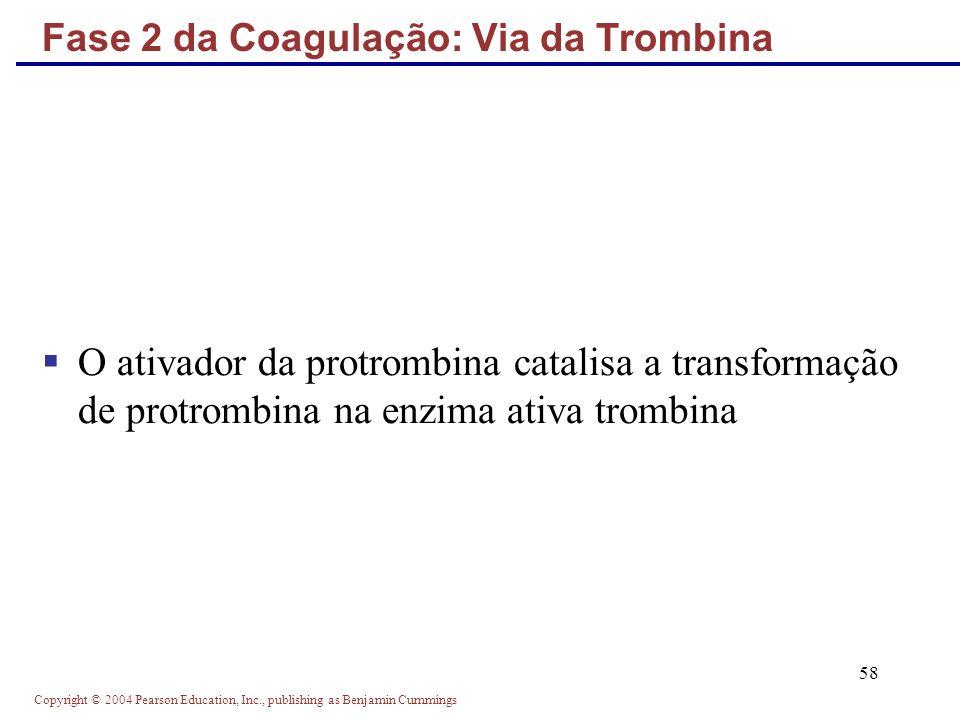 Fase 2 da Coagulação: Via da Trombina
