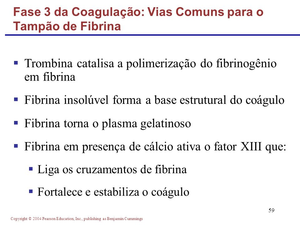 Fase 3 da Coagulação: Vias Comuns para o Tampão de Fibrina