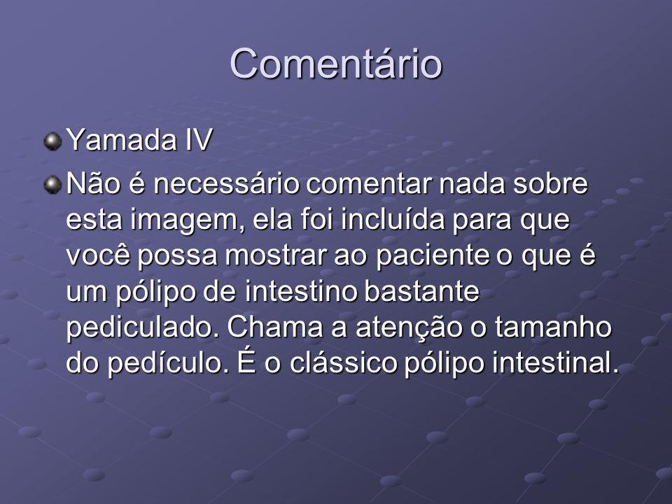 Comentário Yamada IV.