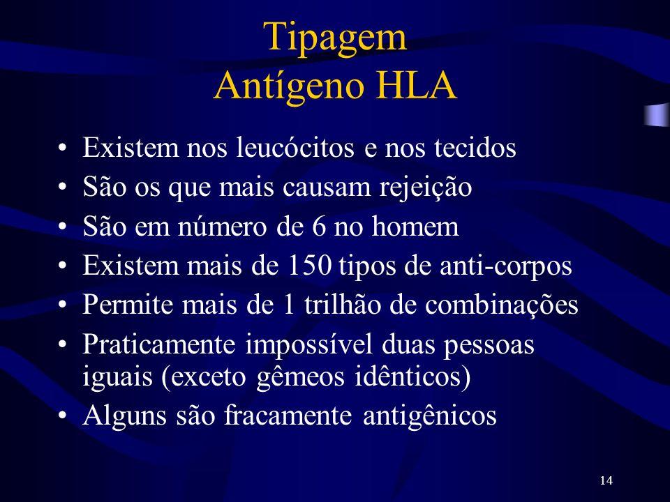 Tipagem Antígeno HLA Existem nos leucócitos e nos tecidos