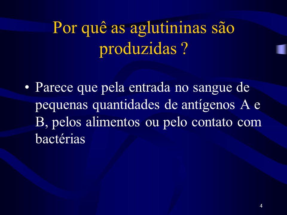 Por quê as aglutininas são produzidas