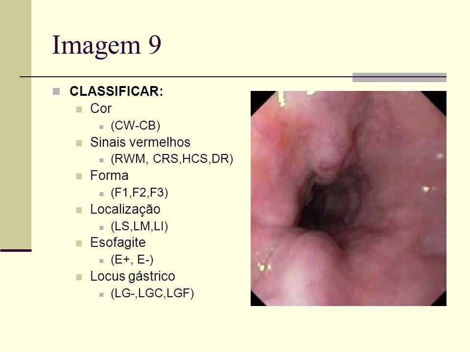 Imagem 9 CLASSIFICAR: Cor Sinais vermelhos Forma Localização Esofagite