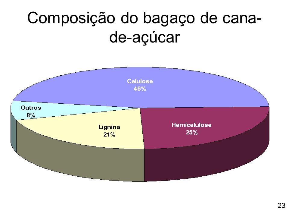 Composição do bagaço de cana-de-açúcar