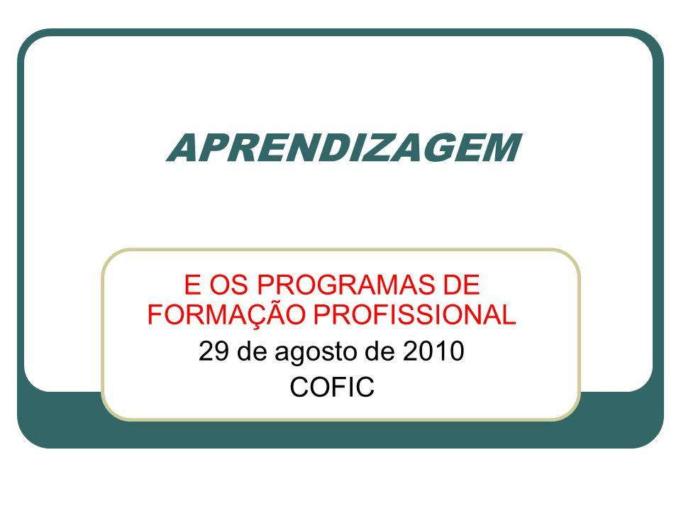 E OS PROGRAMAS DE FORMAÇÃO PROFISSIONAL 29 de agosto de 2010 COFIC