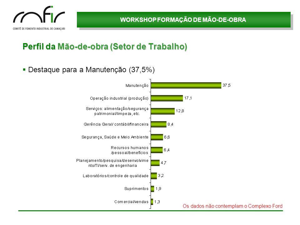 Perfil da Mão-de-obra (Setor de Trabalho)