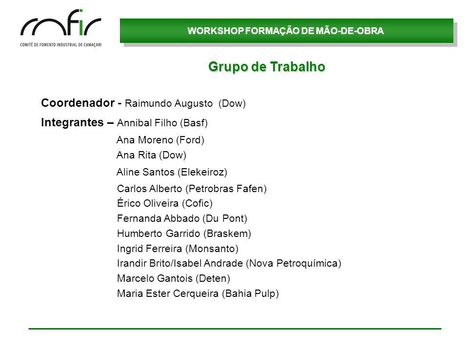 Grupo de Trabalho Coordenador - Raimundo Augusto (Dow)