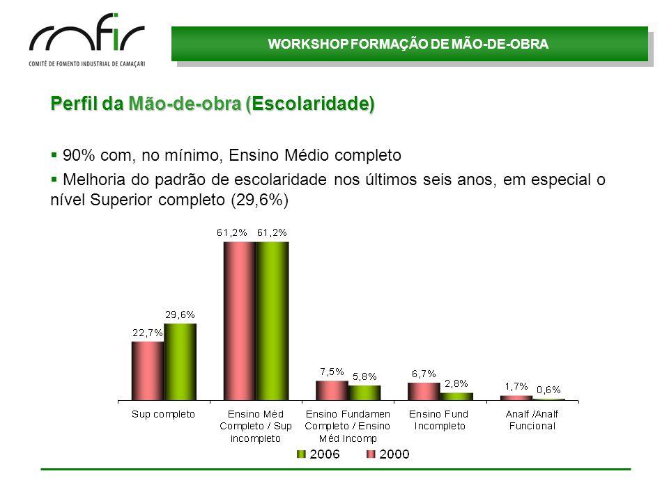 Perfil da Mão-de-obra (Escolaridade)