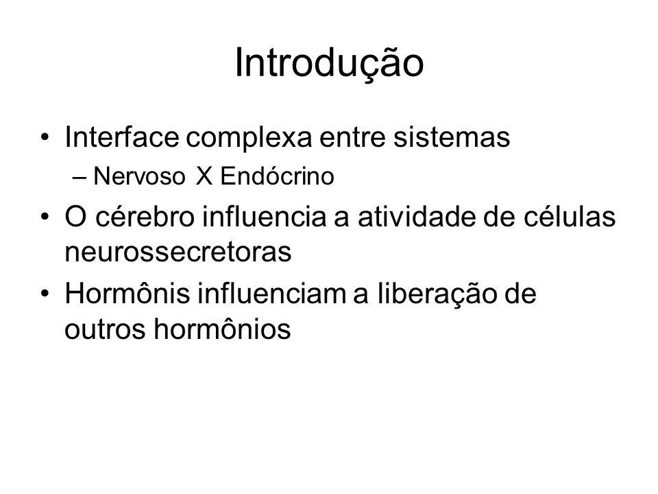 Introdução Interface complexa entre sistemas