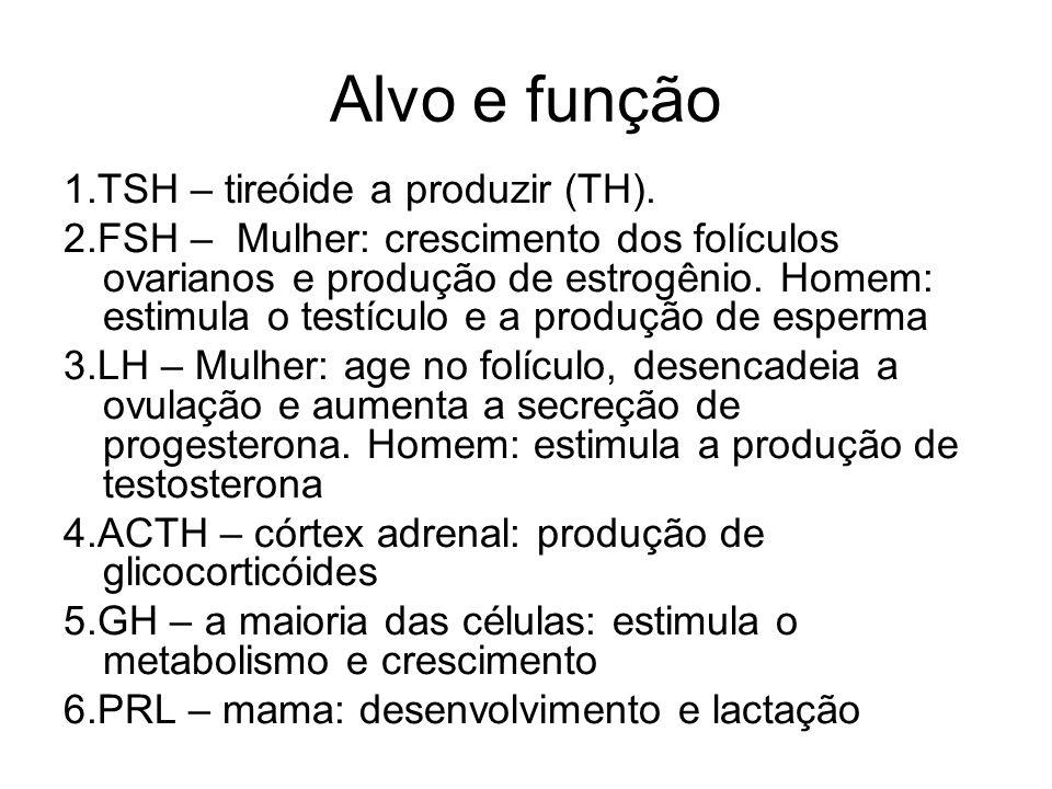 Alvo e função 1.TSH – tireóide a produzir (TH).