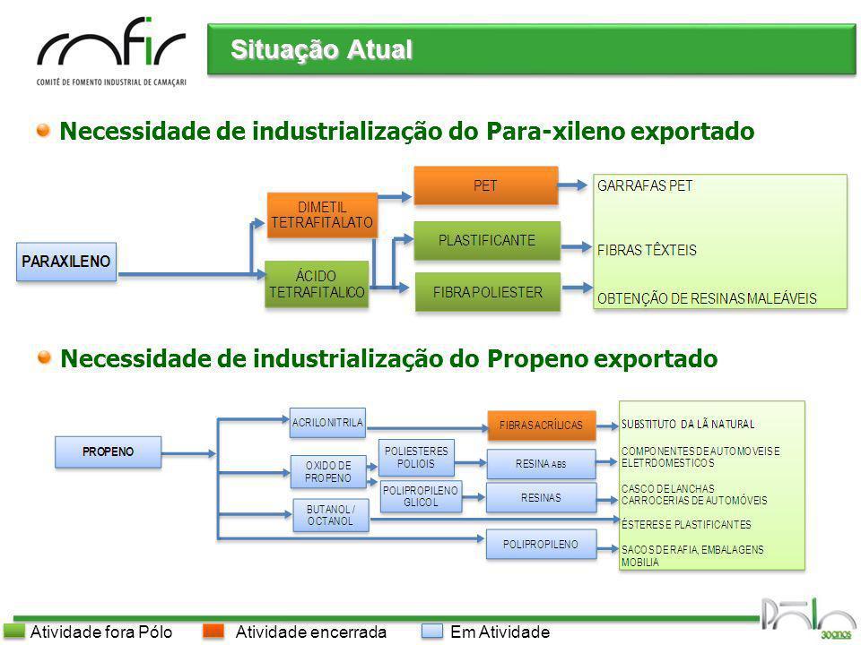 Situação Atual Necessidade de industrialização do Para-xileno exportado. Necessidade de industrialização do Propeno exportado.