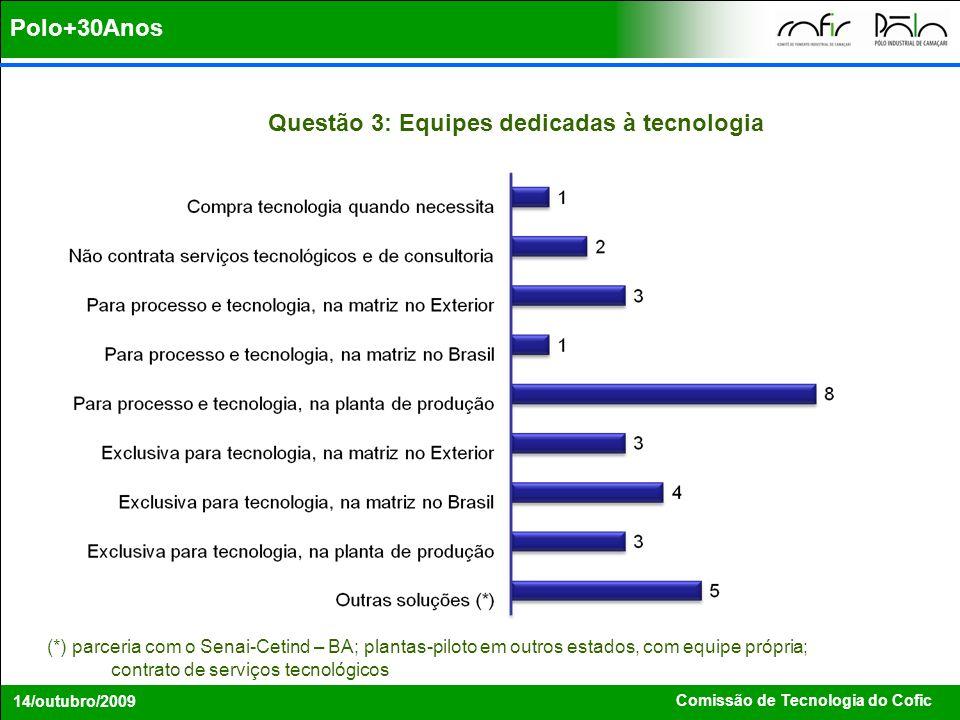 Polo+30Anos Questão 3: Equipes dedicadas à tecnologia