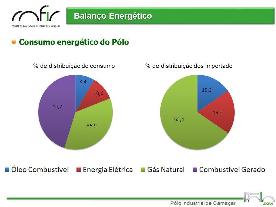 Balanço Energético Consumo energético do Pólo