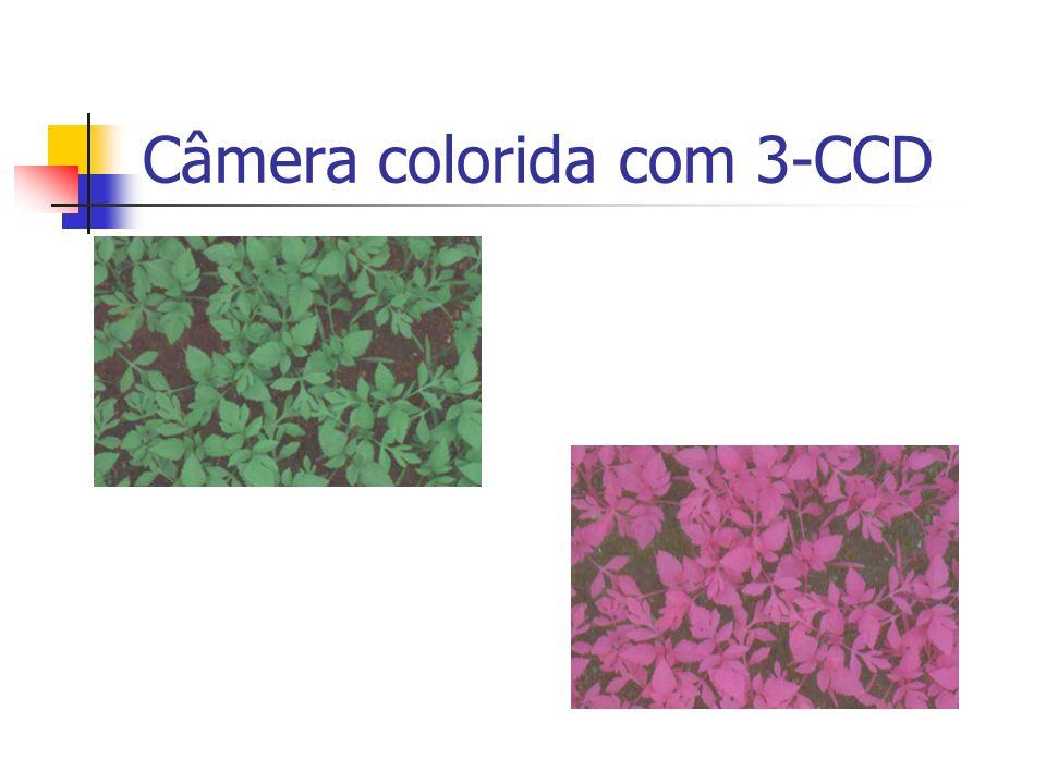 Câmera colorida com 3-CCD