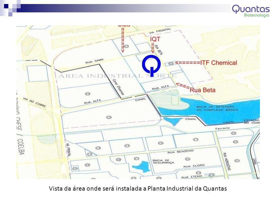 Vista da área onde será instalada a Planta Industrial da Quantas
