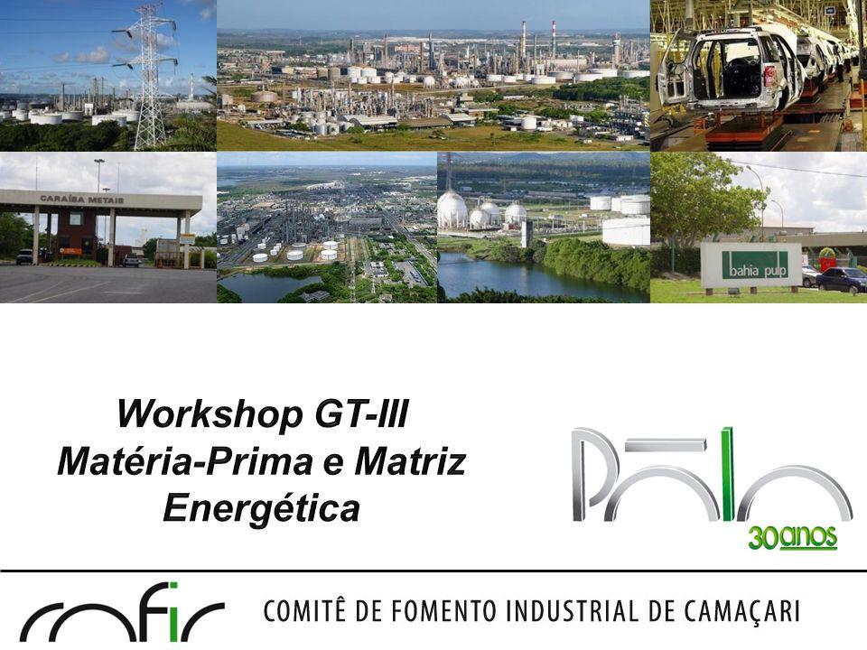 Workshop GT-III Matéria-Prima e Matriz Energética