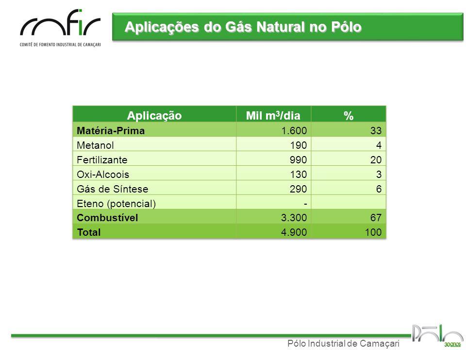 Aplicações do Gás Natural no Pólo