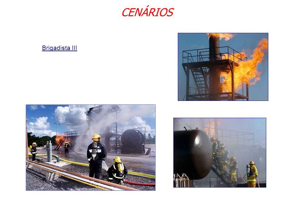 CENÁRIOS Brigadista III