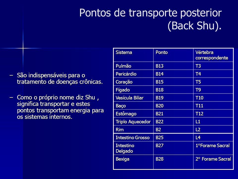 Pontos de transporte posterior (Back Shu).