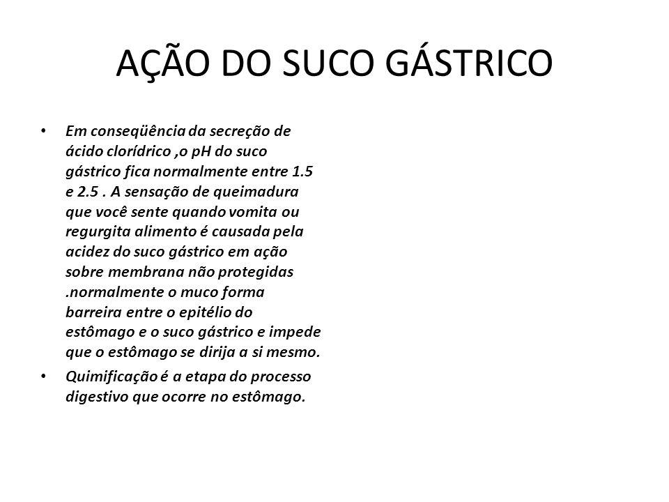 AÇÃO DO SUCO GÁSTRICO