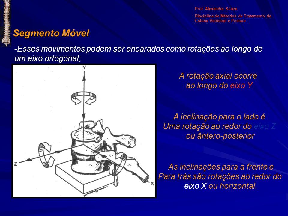 Prof. Alexandre Souza Disciplina de Métodos de Tratamento da Coluna Vertebral e Postura. Segmento Móvel.