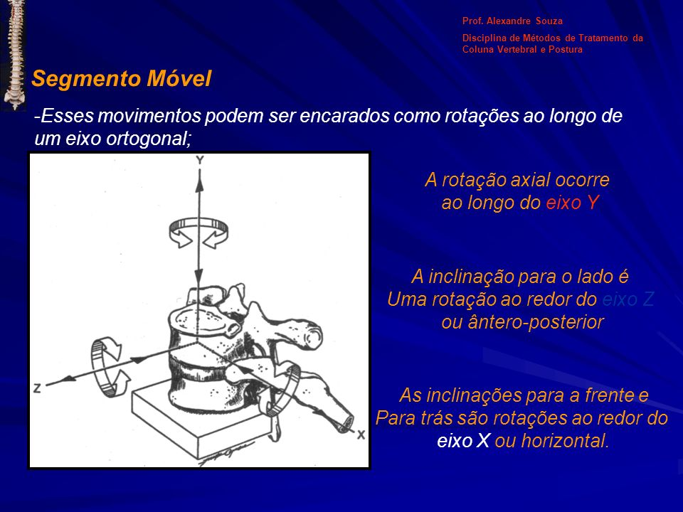 Prof. Alexandre SouzaDisciplina de Métodos de Tratamento da Coluna Vertebral e Postura. Segmento Móvel.