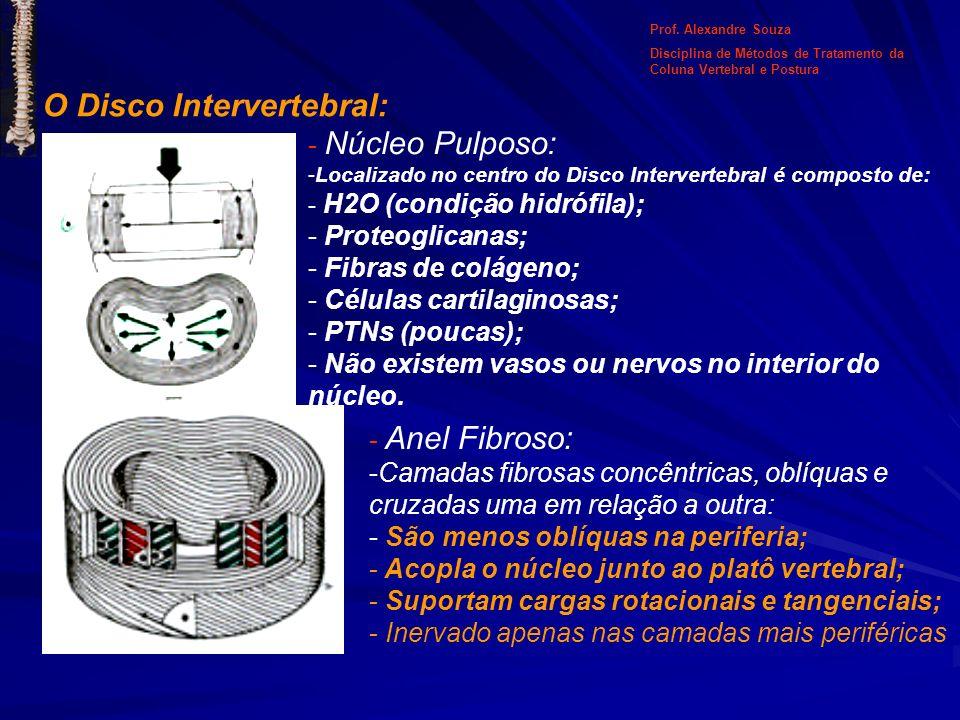 O Disco Intervertebral: