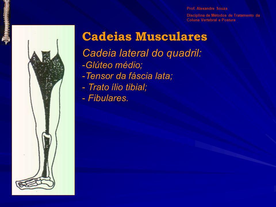 Cadeias Musculares Cadeia lateral do quadril: Glúteo médio;