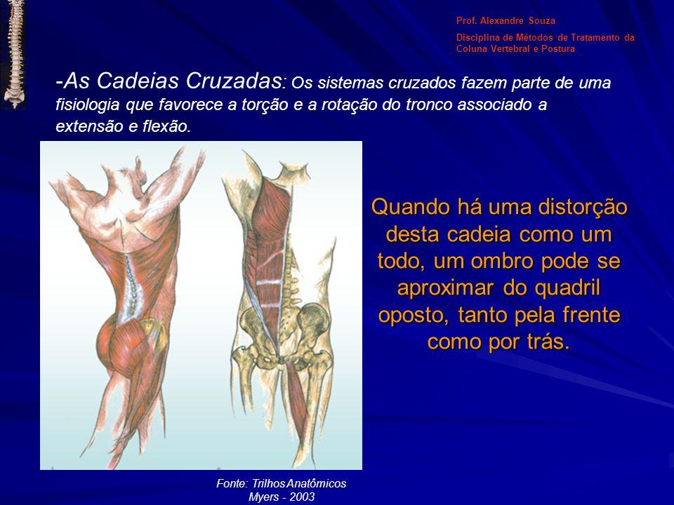 Fonte: Trilhos Anatômicos