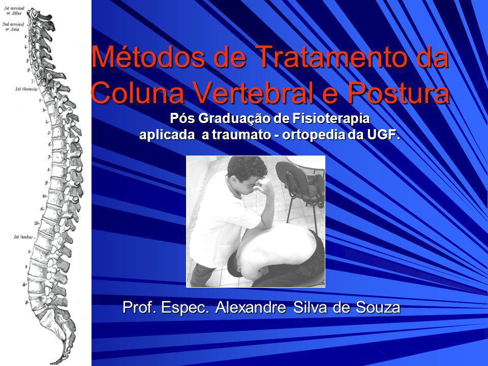 Prof. Espec. Alexandre Silva de Souza