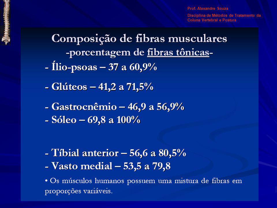 Prof. Alexandre Souza Disciplina de Métodos de Tratamento da Coluna Vertebral e Postura