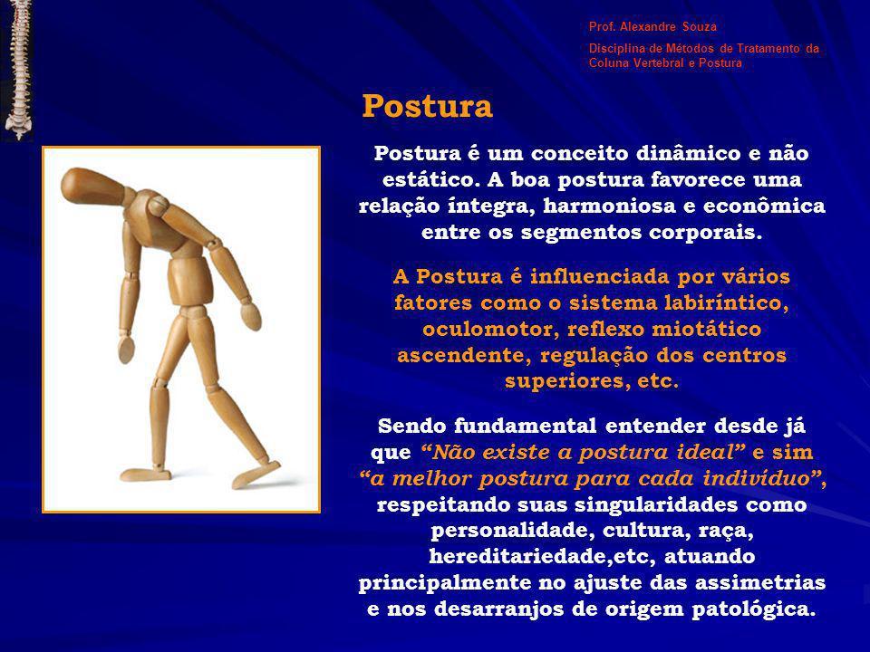 Prof. Alexandre Souza Disciplina de Métodos de Tratamento da Coluna Vertebral e Postura. Postura.