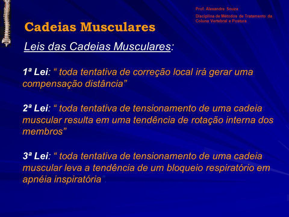 Cadeias Musculares Leis das Cadeias Musculares: