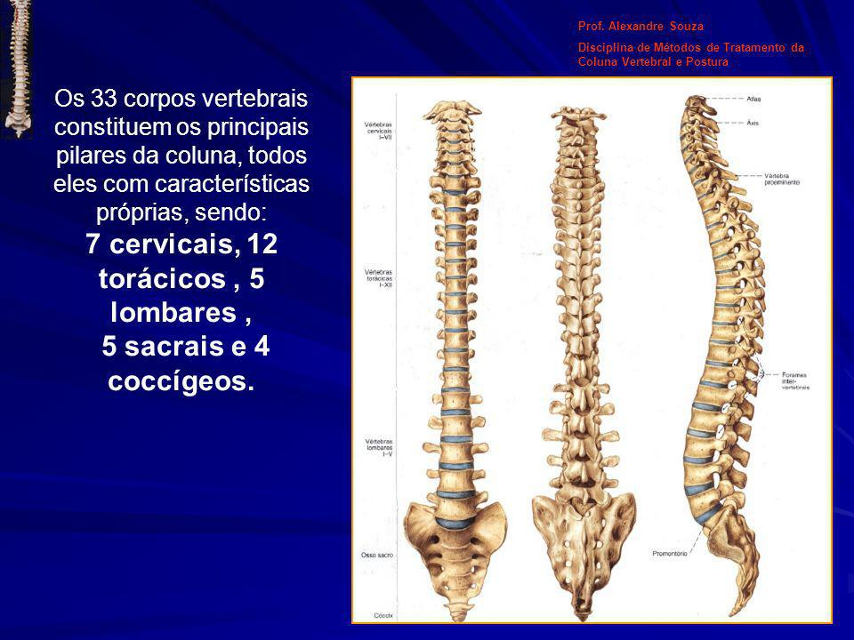 Prof. Alexandre Souza Disciplina de Métodos de Tratamento da Coluna Vertebral e Postura.