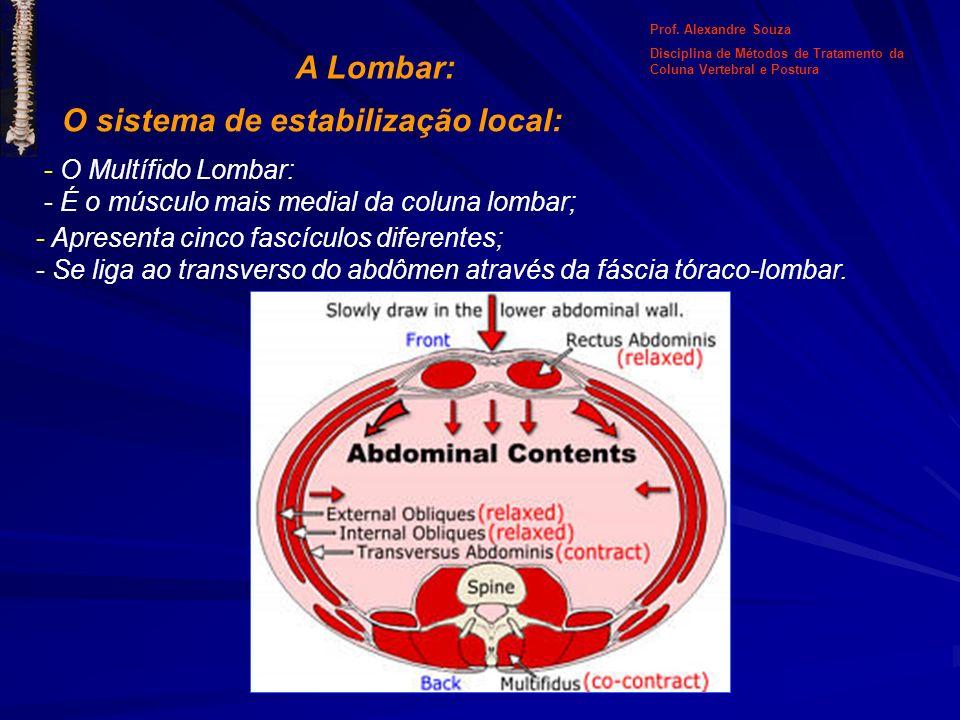 O sistema de estabilização local: